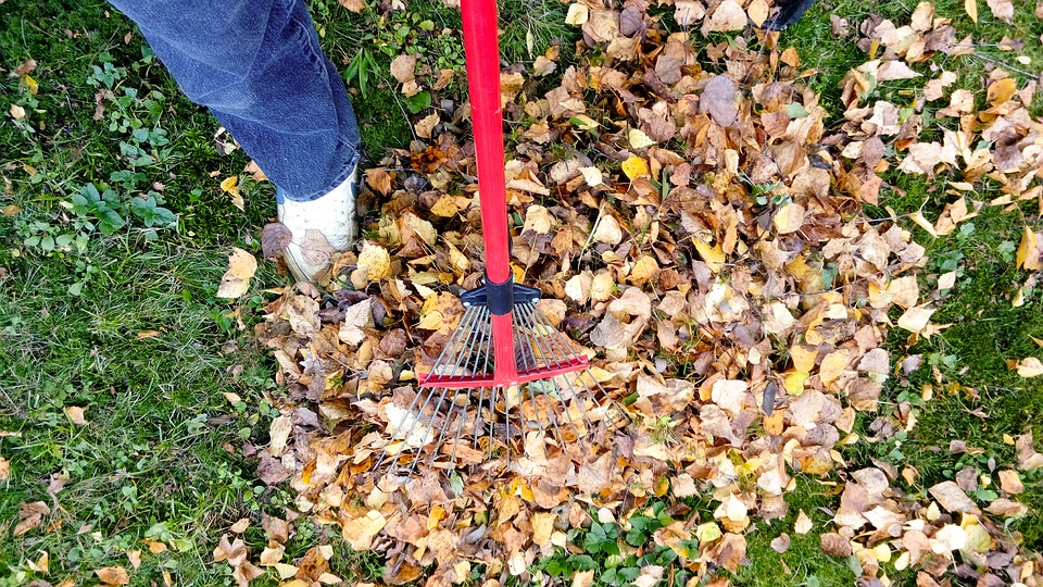 How to properly complete your Fall gardening this year